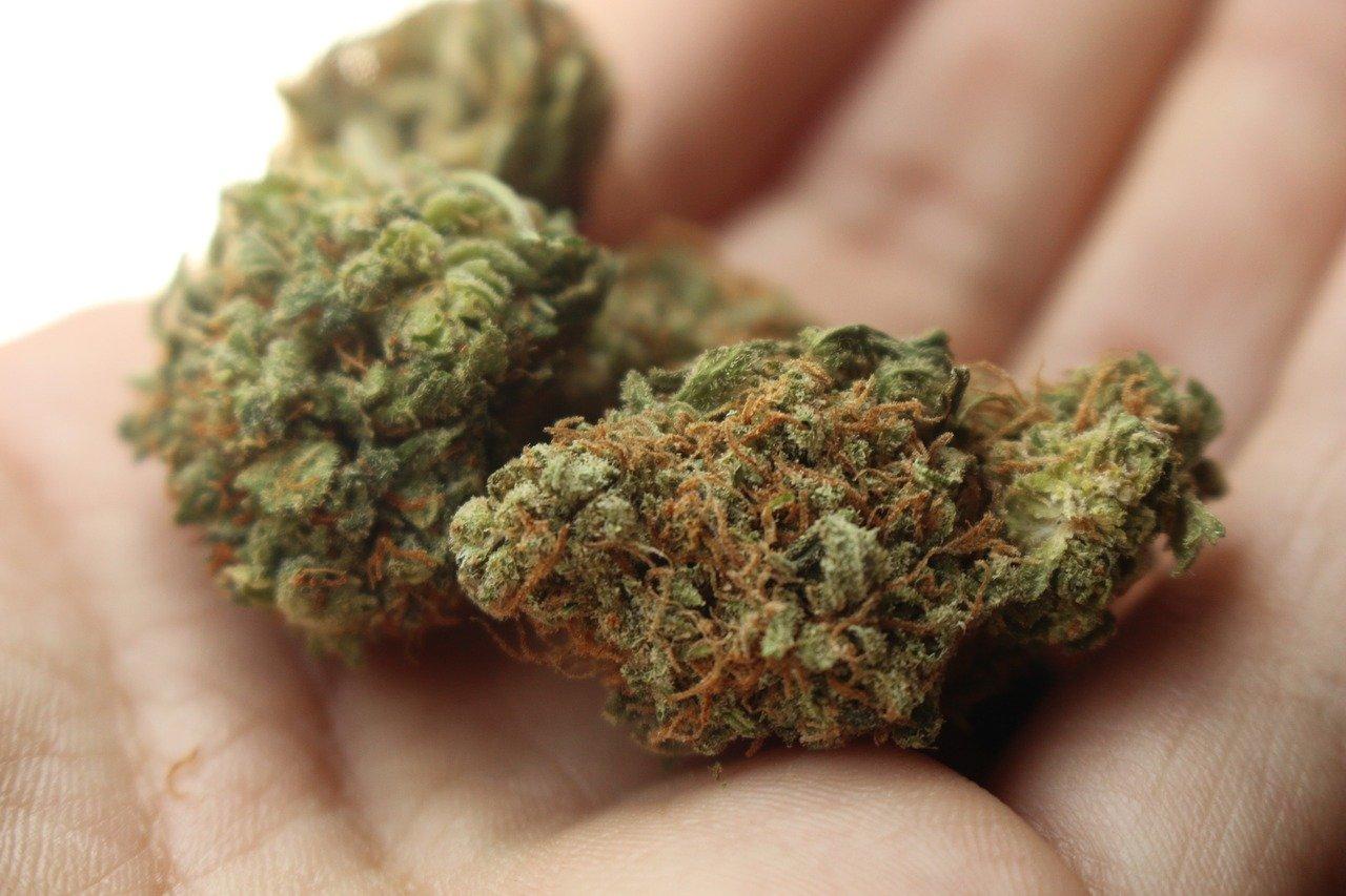 medical-marijuana-coverage-benefits